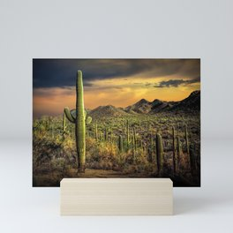 Saguaro National Park at Sunset Mini Art Print