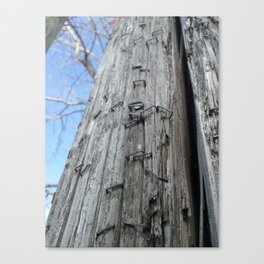 Pole of Posters Past Canvas Print