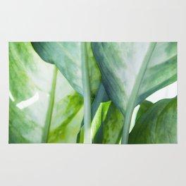 tropic abstract Rug