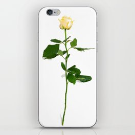 Yellow Rose (Color) iPhone Skin