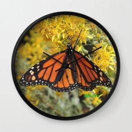 Monarch on Rubber Rabbitbrush Wall Clock