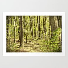 Follow the Right Path Art Print