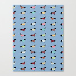 Dachshund - Blue Sweaters #708 Canvas Print