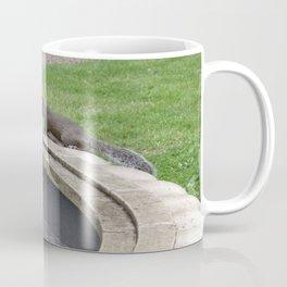 squirrel at fountain Coffee Mug