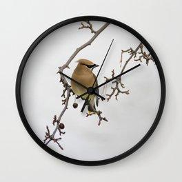 Cedar Waxwing Elegance Wall Clock