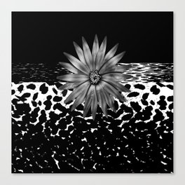Animal Print Cheetah Black and White Pattern and Silver Medallion Canvas Print