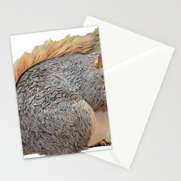 Squirrel Eating Fat Body Rodent Funny Eat Peanut Stationery Cards