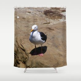 Me and My Shadow ~ Seagull at La Jolla, California Shower Curtain