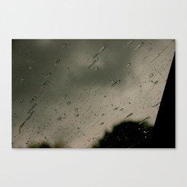 Teardrops Canvas Print