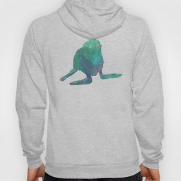 Albino Seal From The Cosmos Hoody