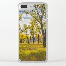 Cottonwoods, Theodore Roosevelt NP, ND 2 Clear iPhone Case