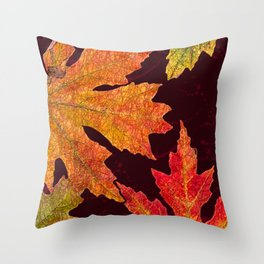 Leaves of Red Gold and Orange a Breath of Fall Throw Pillow