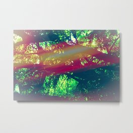And Into The Forest I Go To Lose My Mind and Find My Soul Metal Print