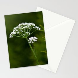 wild herbs 2 Stationery Cards