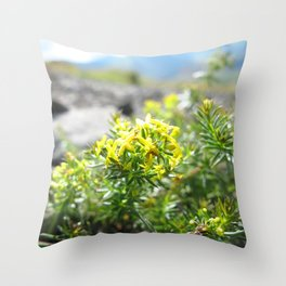 Watercolor Flower, Yellow Saxifrage 01, Dalvik, Iceland Throw Pillow