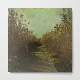The path into the unknown Metal Print
