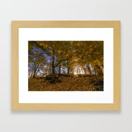 Golden Manito Framed Art Print