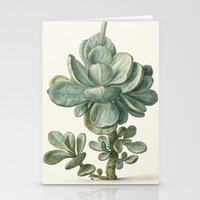succulent Stationery Cards featuring Succulent by anipani