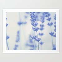 lavender Art Prints featuring Lavender  by SUNLIGHT STUDIOS  Monika Strigel