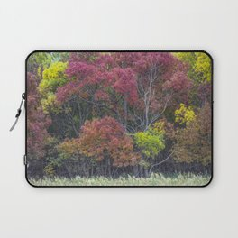 Automne 03 Laptop Sleeve