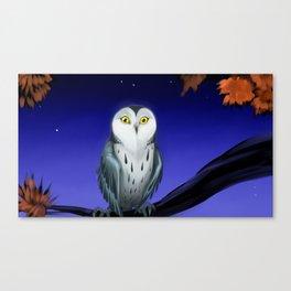 At night_1 Canvas Print
