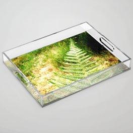 Green Fern Acrylic Tray