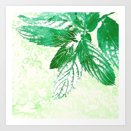 Peppermint  Art Print