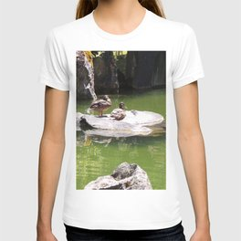 Ducks on a Rock in the Middle of a Pond, Wildlife, Ducks, Water T-shirt