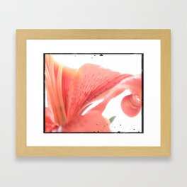 Lilly Print Framed Art Print