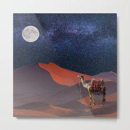 Sahara Star Gazing Metal Print