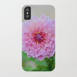 Dahlia Decadence iPhone Case