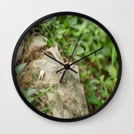 Tooth & Clothing, Killing Fields, Cambodia Wall Clock