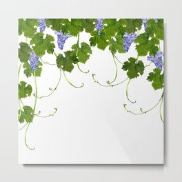 Watercolor grape vine Metal Print