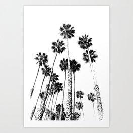 Tropical Darkroom #278 Art Print