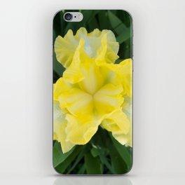 Yellow Iris by Teresa Thompson iPhone Skin