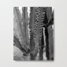 cacti film Metal Print