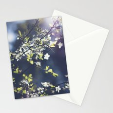 Backlight Blossoms Stationery Cards