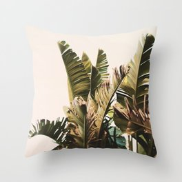 Equatorial Throw Pillow