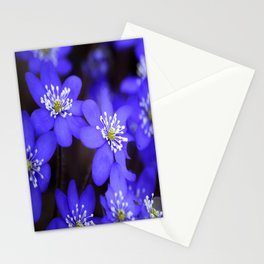 First Spring Flowers in Forest Stationery Cards