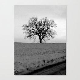 Winter Dead Tree Canvas Print