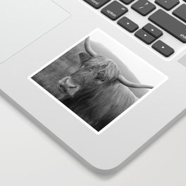 Highland cow I Sticker