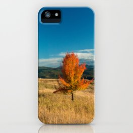 Simple Fall Tree iPhone Case