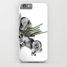 Bighorn Ram Slim Case iPhone 6s