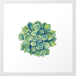 November Succulents Art Print