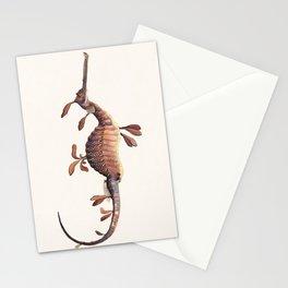 Leafy Sea Dragon Stationery Cards