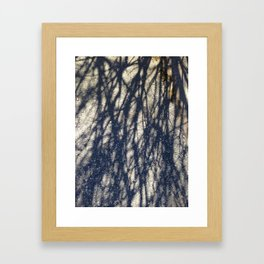 Abstracts in Nature Series -- Winter Tree Shadows Framed Art Print