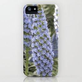 Longwood Gardens Orchid Extravaganza 51 iPhone Case