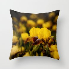 Yellow and Maroon Irisis Throw Pillow