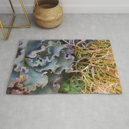 Succulents on Fire Rug