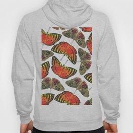 Butterfly Pattern Brown Red Orange Hoody